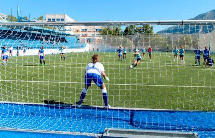 Football-pitch_1