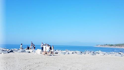 beach-cleaning-marbella